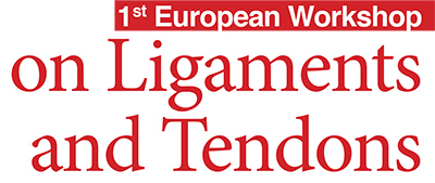 europeans workshop on ligaments and tendons